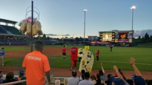 Gay Night in ABQ for Isotopes Baseball